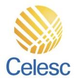 CELESC quer conhecer TI de SC