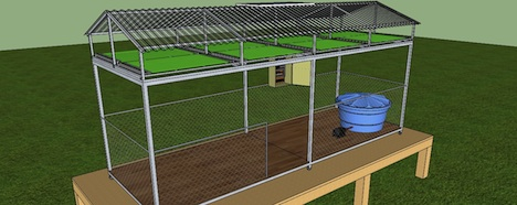 Microalgas viram biocombustível com tecnologia de Santa Catarina